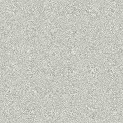 Silver Metallic (4018)