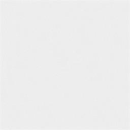 Arctic White (4231)