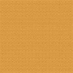 Buzz2 - Carrot (5G54)